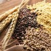 article_switching_to_wholegrain_2048x1152_01_2